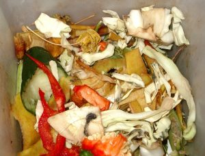 biodegradable_waste