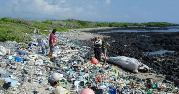 sea-waste